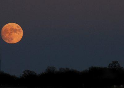 Full Moon Xmas Eve 2015